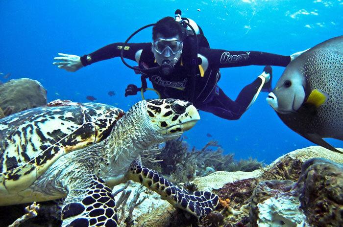 Top 10 Adventure Activities In India | Volunteering India Blog