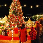 things to experience in Delhi on Christmas