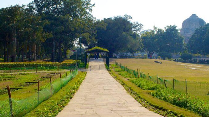 walk at Lodhi Gardens
