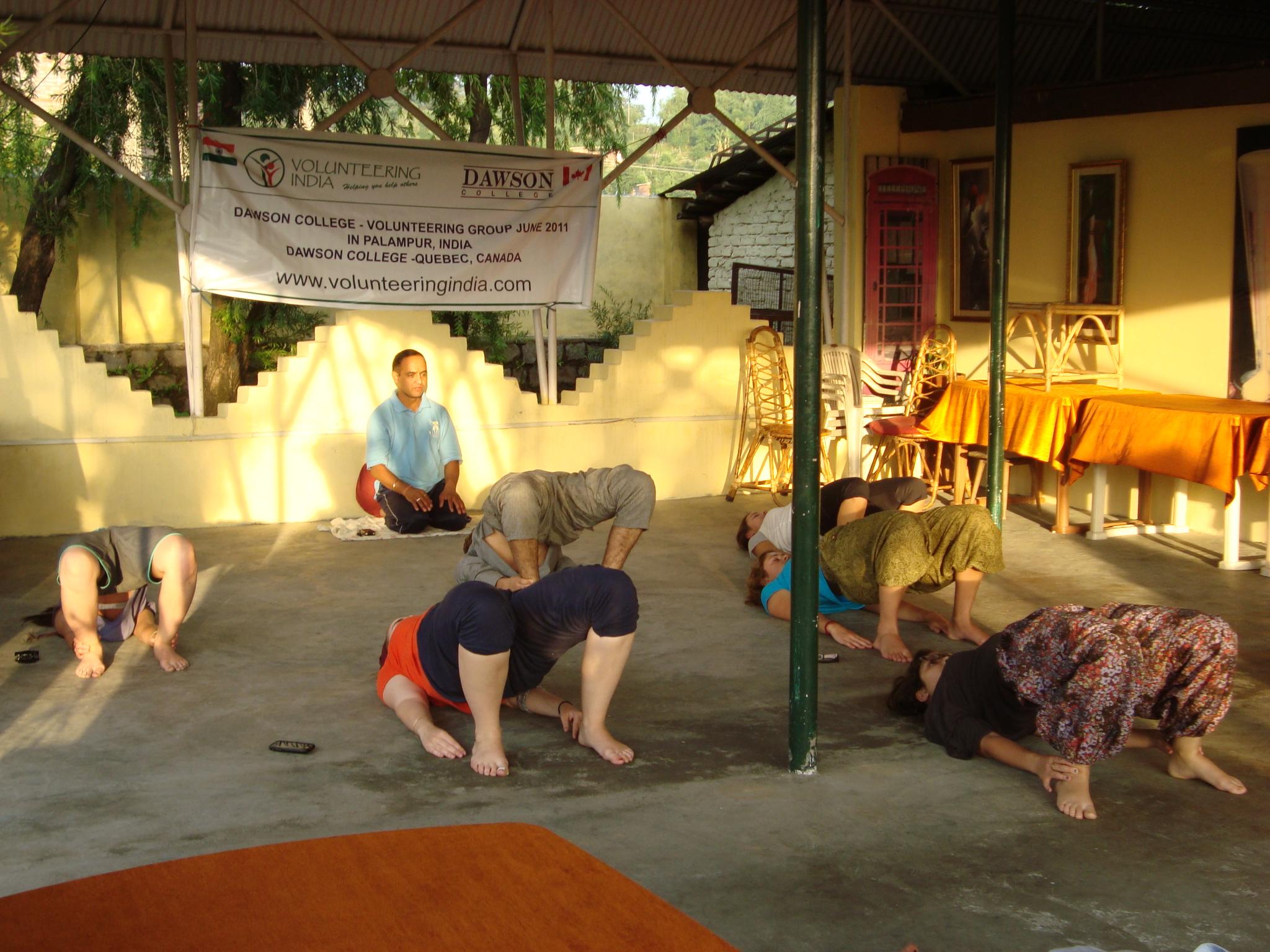yoga & volunteer adventure in palampur